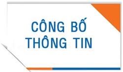CÔNG BỐ THÔNG TIN 24H